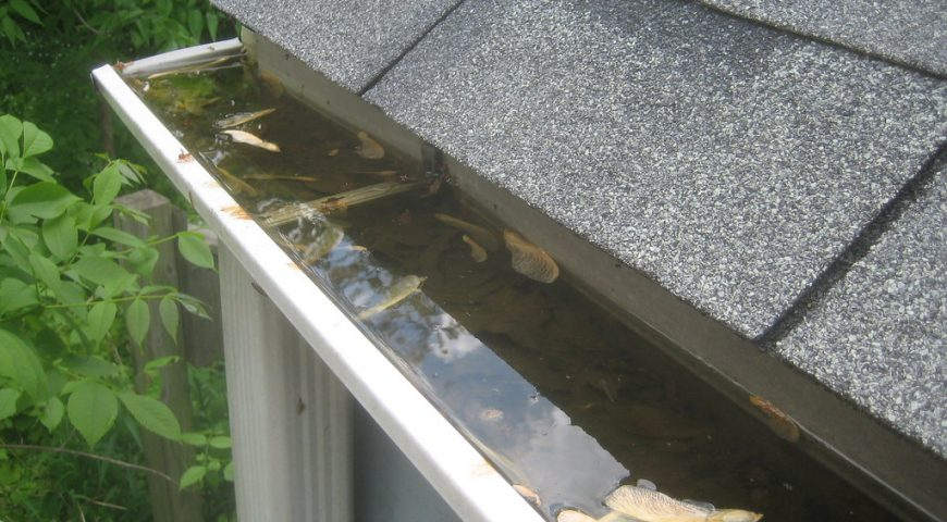 How to Keep Leaves Out of Your Gutters