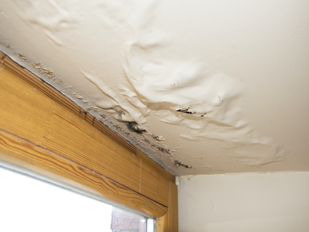 Fix Roof Leaks ASAP: How a Leaking Roof Affects Your Entire Home